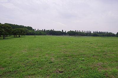 mizumotokouen06