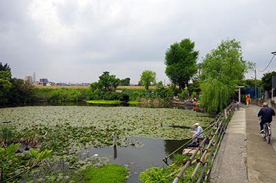 shibamata002