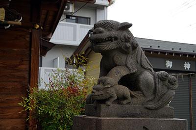 shibamata017