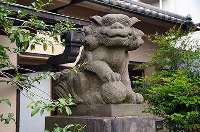 shibamata018